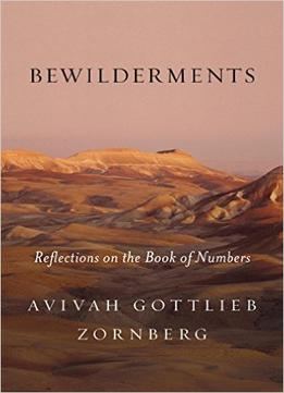 Download ebook Bewilderments: Reflections On The Book Of Numbers