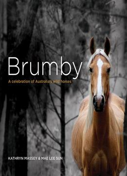 Download Brumby: A Celebration Of Australia's Wild Horses