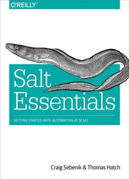 Download Salt Essentials