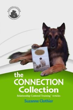 Download The Connection Collection