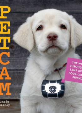 Download Petcam: The World Through The Lens Of Our Four-legged Friends