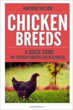 Chicken Breeds: A Quick Guide On Chicken Breeds For Beginners