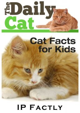 Download The Daily Cat – Cat Facts for Kids