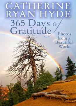 Download 365 Days Of Gratitude: Photos From A Beautiful World
