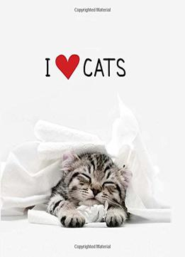 Download I Love Cats