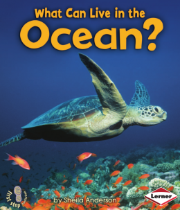 Download What Can Live in the Ocean?