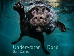 Download Underwater Dogs