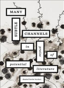 Download Many Subtle Channels: In Praise Of Potential Literature