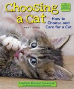 Choosing a Cat: How to Choose and Care for a Cat