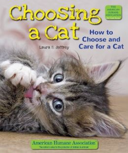 Download Choosing a Cat: How to Choose & Care for a Cat