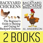 Backyard Chickens Book Package