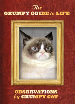 Download The Grumpy Guide to Life