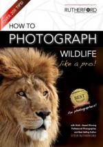 How to Photograph Wildlife Like a Pro