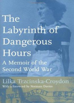 Download ebook The Labyrinth Of Dangerous Hours