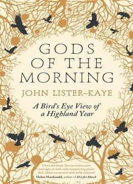 Download Gods Of The Morning