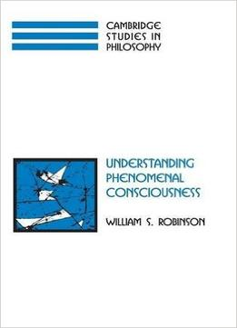 Download Understanding Phenomenal Consciousness