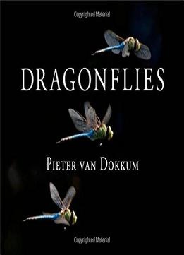 Download Dragonflies: Magnificent Creatures Of Water, Air, & Land