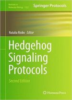 Hedgehog Signaling Protocols, 2nd Edition