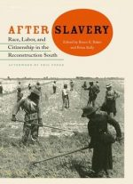 After Slavery: Race, Labor, And Citizenship In The Reconstruction South