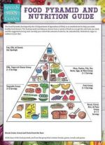 Food Pyramid And Nutrition Guide