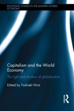 Capitalism and the World Economy: The Light and Shadow of Globalization