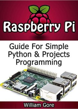 Download Raspberry Pi: Guide For Simple Python & Projects Programming