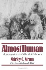 Almost Human: A Journey Into the World of Baboons