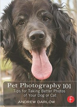 Download ebook Pet Photography 101: Tips for taking better photos of your dog or cat