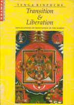 Transition and Liberation: Explanations of Meditation in the Bardo
