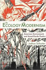 The Ecology of Modernism: American Environments and Avant-Garde Poetics