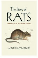 The Story of Rats: Their Impact on Us, and Our Impact on Them