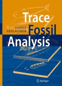 Download ebook Trace Fossil Analysis