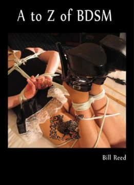 Download ebook A to Z of BDSM