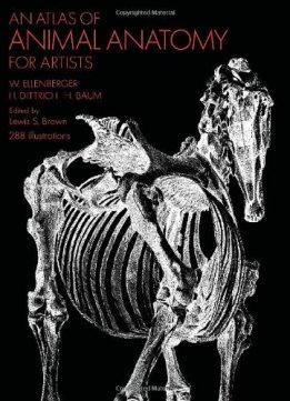 Download ebook An Atlas of Animal Anatomy for Artists