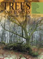 Trees and Forests, A Colour Guide
