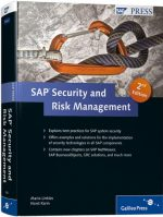 SAP Security and Risk Management, 2nd edition