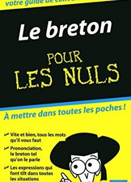 Download ebook Le Breton Guide de conversation Pour les nuls