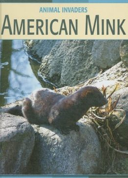Download American Mink (Animal Invaders)