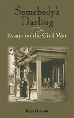 Somebody's Darling: Essays on the Civil War