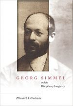 Georg Simmel and the Disciplinary Imaginary