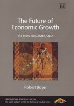The Future of Economic Growth: As New Becomes Old