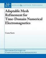 Adaptive Mesh Refinement for Time-Domain Numerical Electromagnetics