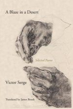 A Blaze in a Desert: Selected Poems