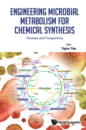 Engineering Microbial Metabolism For Chemical Synthesis : Reviews And Perspectives