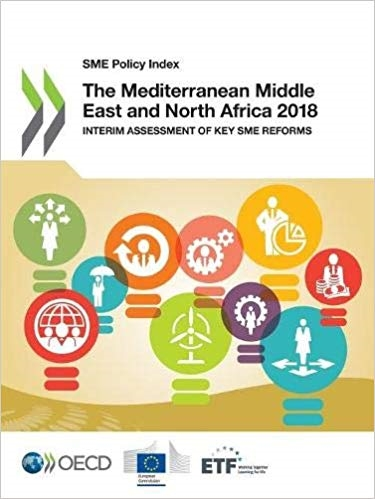 The Mediterranean Middle East and North Africa 2018: Interim Assessment of Key SME Reforms