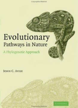 Evolutionary pathways in nature: A phylogenetic approach