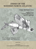 Fishes of the Western North Atlantic, Part Ten: Order Beloniformes