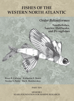 Fishes of the Western North Atlantic, Part Ten: Order Beloniformes : Needlefishes, Sauries, Halfbeaks, and Flyingfishes