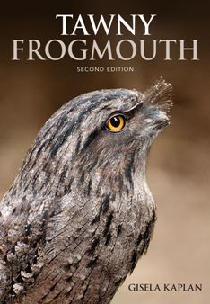 Tawny Frogmouth, Second Edition
