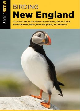Birding New England: A Field Guide to the Birds of Connecticut, Rhode Island, Massachusetts, Maine, New Hampshire, and...